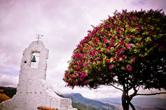 Tree and church. With with flowers next to church Stock Photos