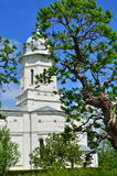 Tree and church. View on acacia tree and white orthodox church from Saon Monastery on the background of a clear blue sky. Sunny spring day. Romania stock photos