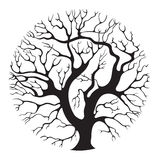 Tree-circle. Elegant stylised isolated tree silhouette Royalty Free Stock Photo
