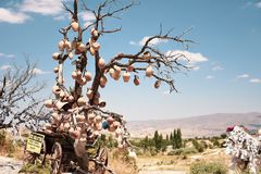 Tree with clay pots royalty free stock photos