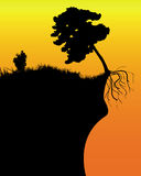 Tree on a cliff. Black silhouette of a tree on a cliff in an orange background Stock Images