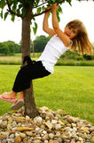 Tree climbing. A young girl climbing a tree Royalty Free Stock Images