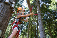 Tree climbing Stock Photo