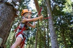 Tree climbing stock photo