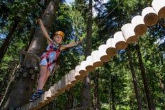 Tree climbing Royalty Free Stock Image