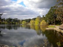 Tree and cloud reflections in Daylesford Lake, Victoria, Australia. Royalty Free Stock Photography