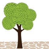 Tree and cobblestone walkway Royalty Free Stock Image
