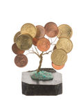 Tree with coins Stock Images