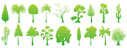 Free Tree Collection Royalty Free Stock Images - 9360219