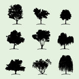 Tree Collection Flat Icon Stock Photo
