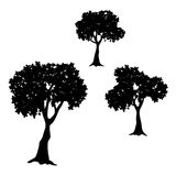 Tree collection vector silhouette illustration Stock Images