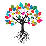 Tree with Color Leafs and Roots. stock illustration