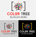 Tree Color Logo. Tree with beautiful colorful leafs.Familytree concept icon logo template Royalty Free Stock Photography