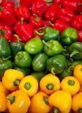 Three color of paprikas Stock Photos