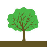 Tree color vector Stock Image