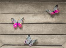 Tree colorful butterflies on a wooden background stock photography