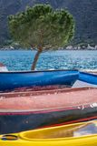 Tree and colorful fishing boats stock photography