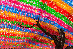 Tree and colorful paper lanterns at the Jogyesa Temple Royalty Free Stock Image
