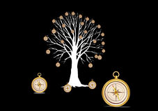 Tree with compasses  Stock Images