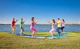 Tree couple , man and woman practice Yoga asana on lakeside. Royalty Free Stock Image