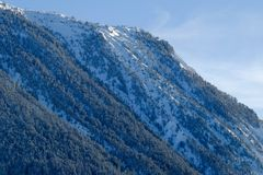 Tree covered snowy Alpine mountainside. A tree covered alpine hillside with snow covering and blue sky Royalty Free Stock Images