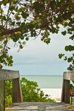 Tree covered entry to a tropical beach. Tree covered wood board walk entry to a tropical, isolated beach beach on the coast of the Gulf of Mexico on a sunny Royalty Free Stock Photo