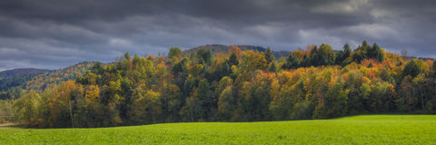 Tree covered hills in autumn Royalty Free Stock Photo