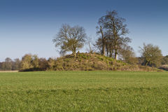 Tree covered neolithic burial mound Royalty Free Stock Photo