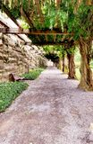 Tree covered Path of Destiny walkway Stock Images