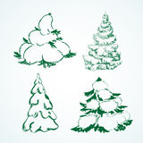 Tree covered with snow. Doodle, sketch. vector Vector Illustration