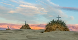Tree Cross Sand Dnues Royalty Free Stock Images