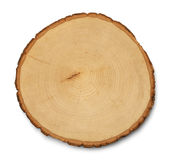 Tree Cross Section. Tree Rings Cross Section and Texture Isolated on White Background Stock Photo
