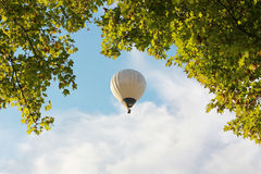 Tree crown and floating hotair balloon Stock Photo