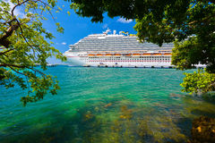 Tree and Cruise Ship Royalty Free Stock Images