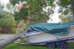 Tree crushing power boat Stock Images