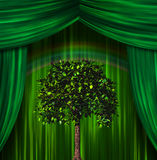 Tree before curtains. High Resolution Tree before curtains Royalty Free Stock Photography