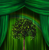 Tree before curtains. Tree and rainbow before curtains Royalty Free Stock Photo