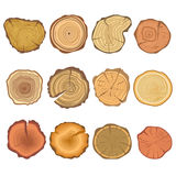 Tree cut sections vector wood icons set Royalty Free Stock Images