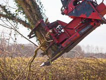 Tree cutting crane in action Royalty Free Stock Photo