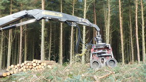 Tree cutting machine. Extended arm Royalty Free Stock Photo