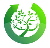 Tree cycle recycle concept illustration design Royalty Free Stock Photography