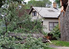 Tree damaged by wind. Trees damaged in wind storm near house Royalty Free Stock Photos