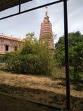 Tree& x27 de couleur de temple ; ciel de nature de s image libre de droits