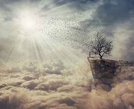 The tree of death royalty free stock images