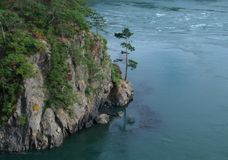 Tree at Deception Pass. Tree growing on the rocks at Deception Pass, WA stock photography