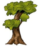 Tree - Deciduous. Tree 04 Deciduous - High detailed and coloured cartoon illustration stock illustration
