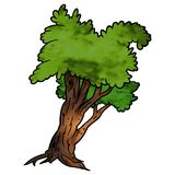 Tree - Deciduous. Tree 13 Deciduous - High detailed and coloured cartoon illustration vector illustration