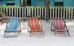 Tree deck chairs on the beach Stock Photography
