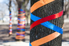 Tree decorated with colored ribbons Stock Photos