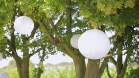 A tree decorated with flowers and white balloons stock video